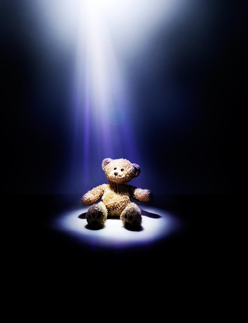 5090 Teddy on BG r2