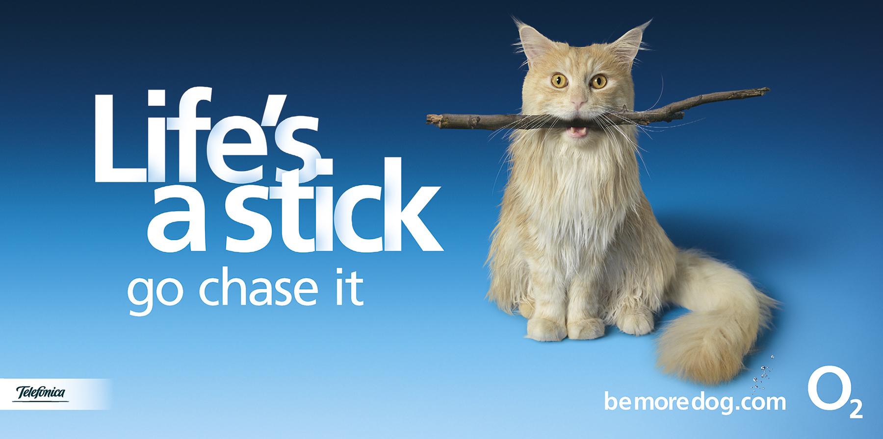BMD Stick Life 48s