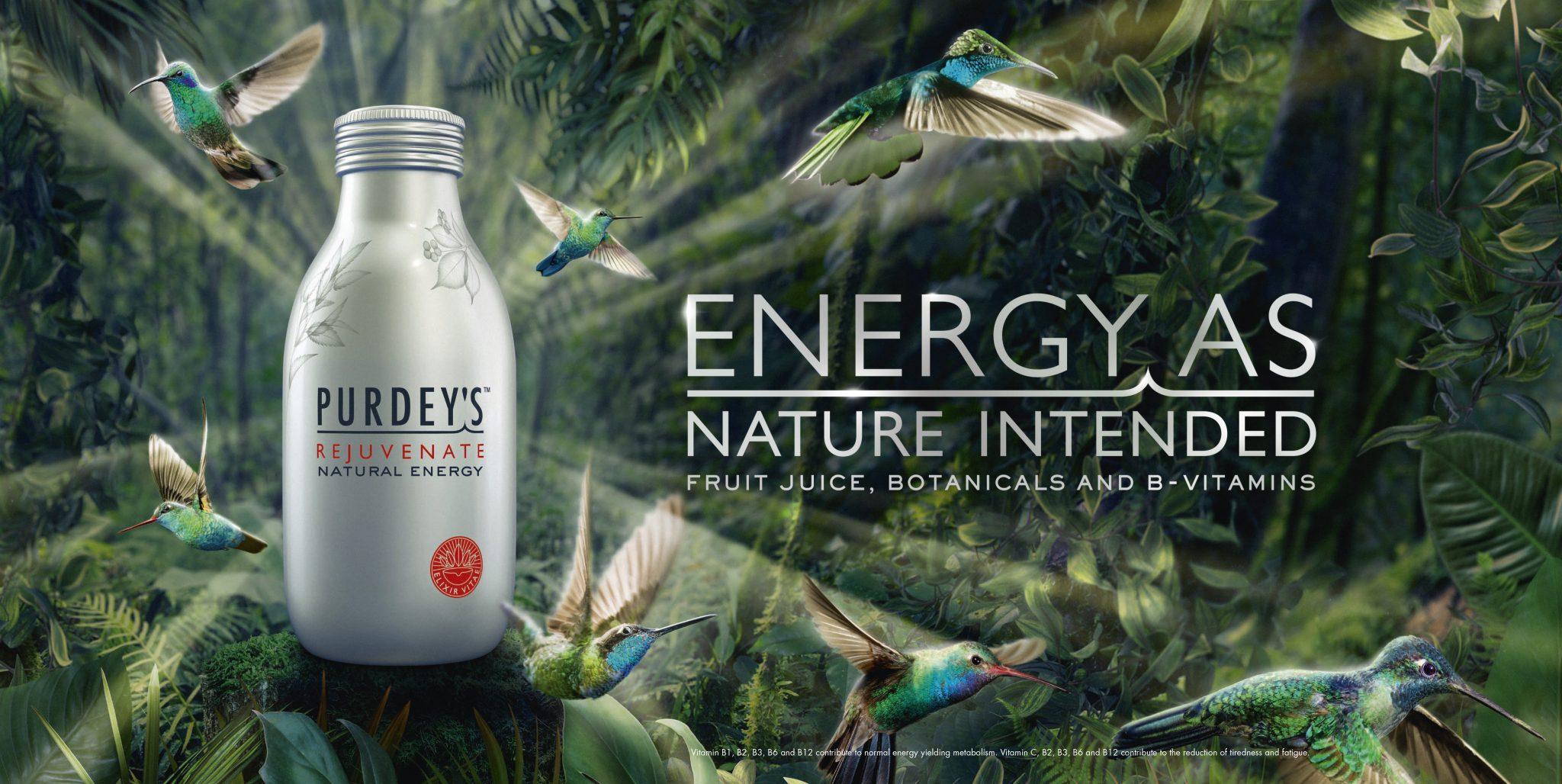 22909 Purdeys Energy 48S Website