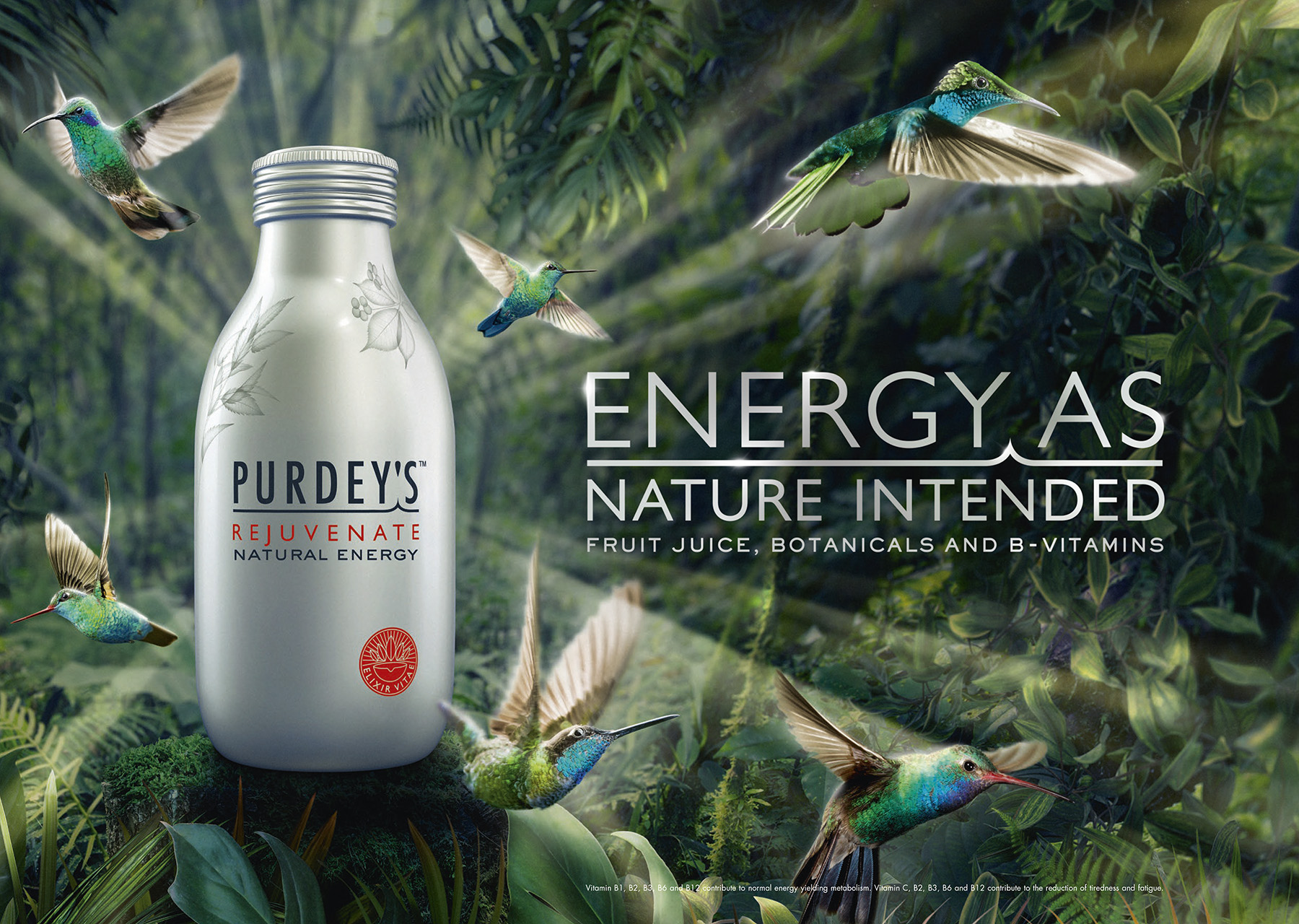 22909 Purdeys Energy A3 Landscape Website