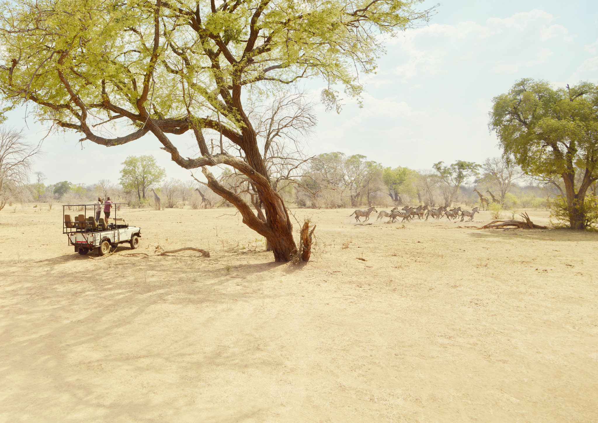 7224_NM_SAGA_Safari_Jeep_r6_Land_crop