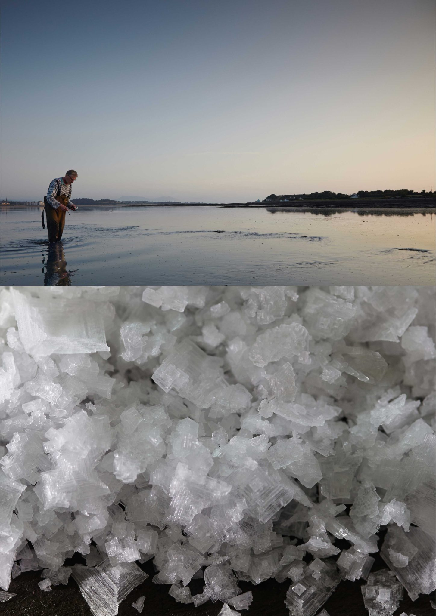 Tesco_Sea_Salt